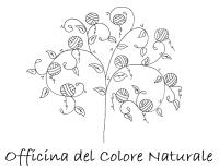 (Ri)Comincia la collaborazione tra Terrae Blu e Valentina Ferrarini