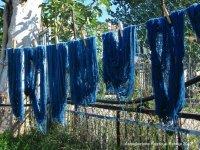 Corso di tintura vegetale della lana